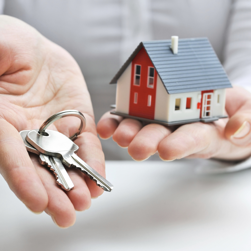 Conveyancing Purchase Guide: A Free step-by-step guide to buying a new home